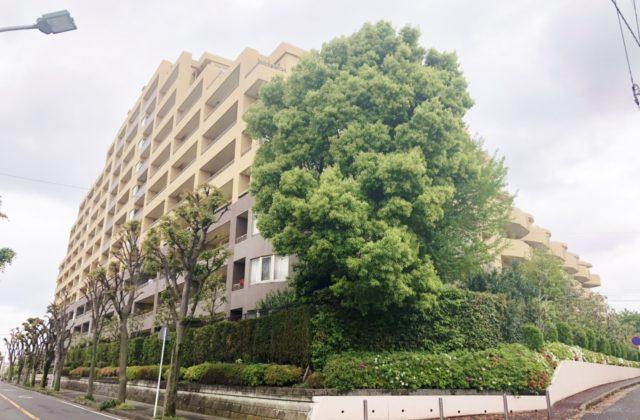 ヴェルデゾーナ新八柱