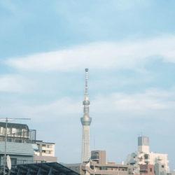 グローベル ザ・シティ上野入谷(9)