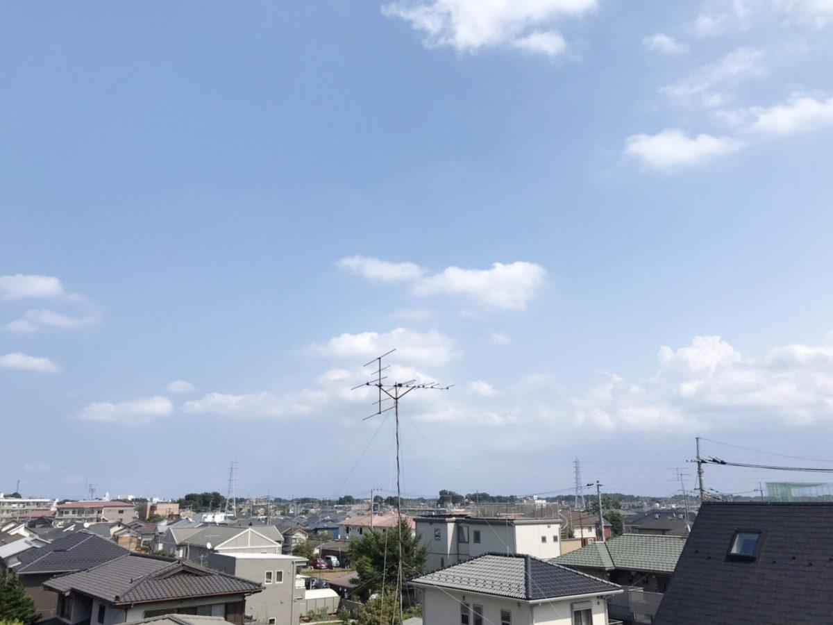バルミー大宮大和田公園(6)