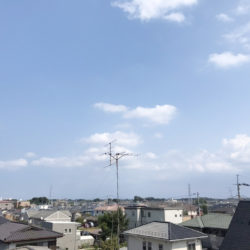 バルミー大宮大和田公園(34)