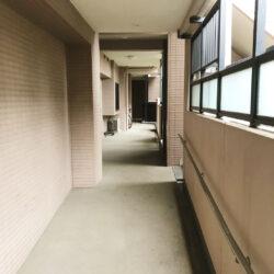 マイキャッスル川口中青木公園(12)